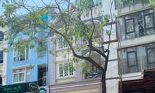 Cần cho thuê nhà phố đường Phạm Thái Bường, PMH 7x18m giá 45 triệu