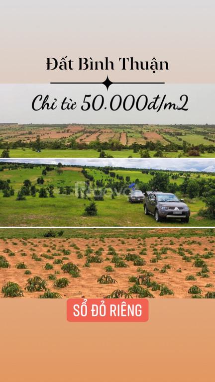 Đất chính chủ gần biển, gần SAFARI 3300ha, giá chỉ có 50.000đ/m2