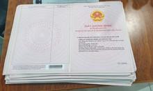Cần tiền bán gấp nền đất ngay cạnh trường tiểu học Phú Chánh.