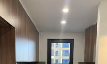 Chính chủ có căn hộ cần cho thuê nhanh Tràng An Complex 88m2 bc Nam