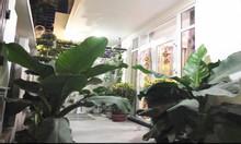 Biệt thự phố Nhật, khu Thị Nghè, chuẩn đẹp, giáp quận 1