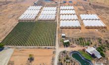 Đất Bắc Bình FarmStay Bình Thuận giá rẻ