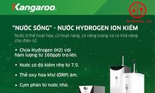 Máy lọc nước Hydrogen điện phân - KG100ES