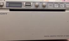 Máy in nhiệt trắng đen Sony xài cho máy siêu âm