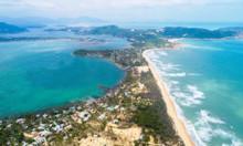 Đất nền mặt biển hiếm khó khó tìm, cơ hội đầu tư giá tốt tại Phú Yên