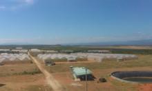 Bán 5000m2 đất Bình Thuận gần biển giá 350 triệu có sổ đỏ