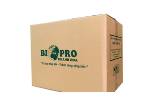 Diệt khuẩn ao tôm bằng iodine Biopro Khánh Hòa
