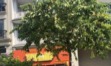 Cần cho thuê mặt bằng đường số 6, khu Hưng Phước, Phú Mỹ Hưng, quận 7