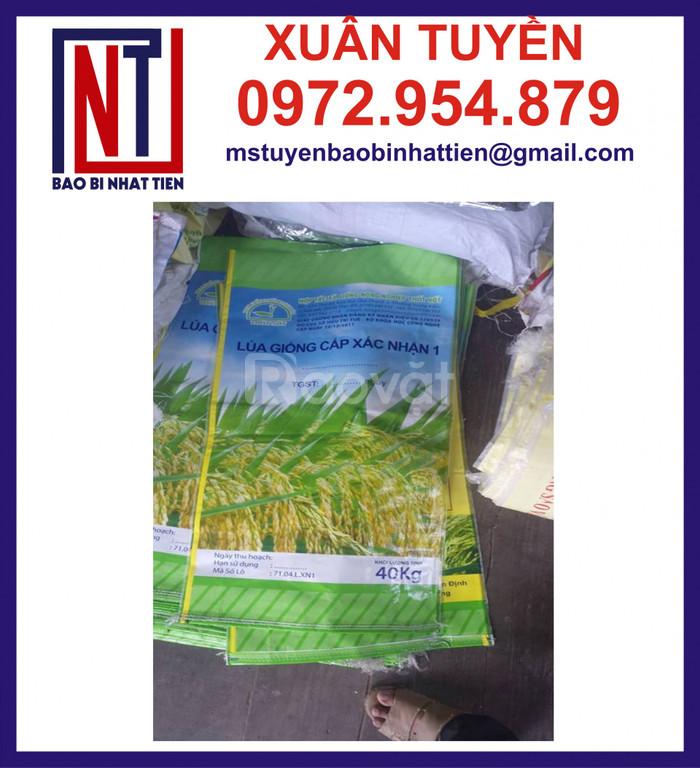Bao đựng 40kg, bao bì đựng lúa giống