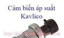 Cảm biến áp suất Kavlico