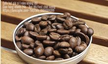 Cà phê hạt nguyên chất Robusta chế biến ướt cao cấp
