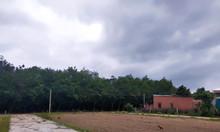 Chính chủ  bán mảnh đất tại Cần Đước- Long An vị trí đẹp