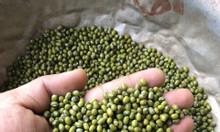 Cung cấp các loại đậu tại Dak Lak