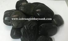 Sỏi trang trí Thùy Oanh chuyên cung cấp các loại sỏi đen bóng