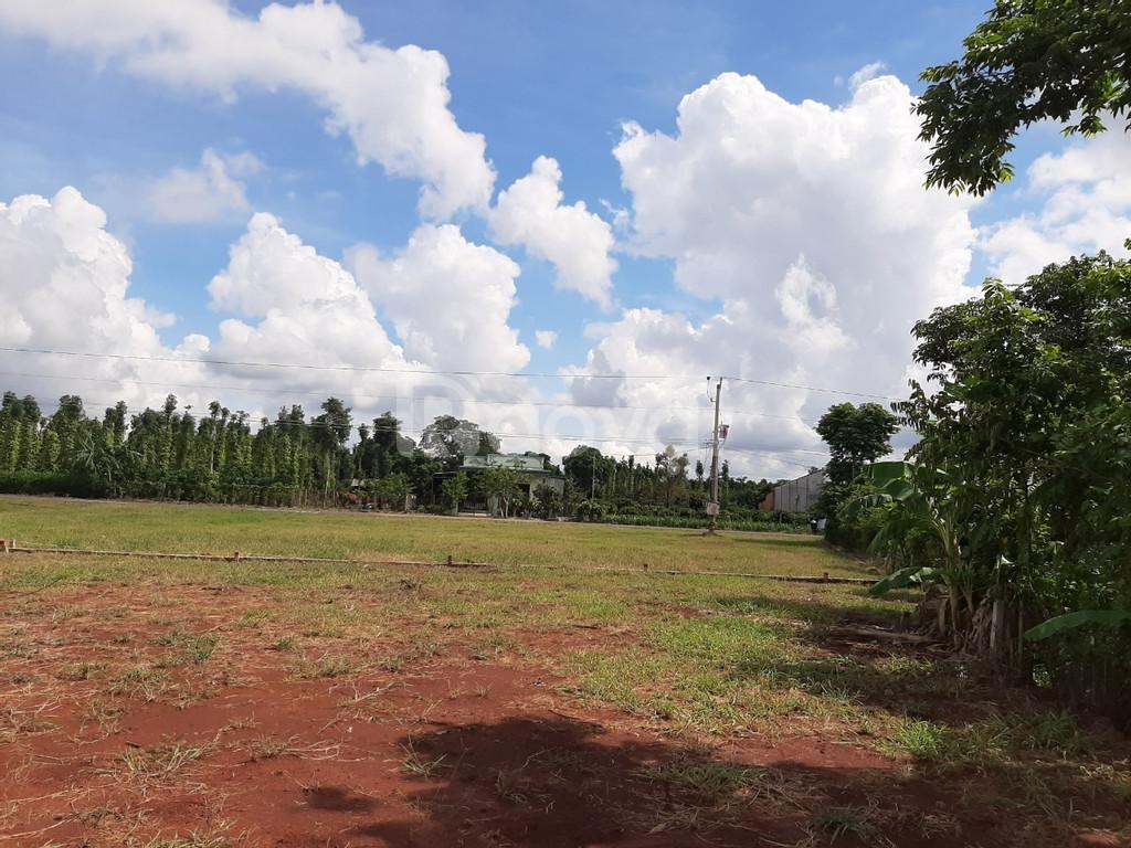 Bán đất sào Chơn Thành, Bình Phước, 500m2, 200tr, ngay KCN Becamex BP