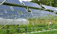 Cung cấp lắp đặt hệ thống pin năng lượng mặt trời tại Nha Trang