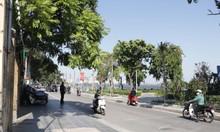 Chính chủ bán 42m2 đất Nguyễn Đình Thi, sổ đẹp, cách Hồ Tây 15m