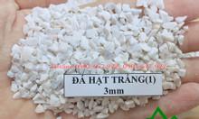 Đá hạt trắng sản xuất gạch Terrazzo
