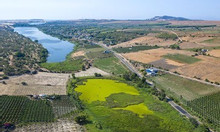 Bán lô đất vườn Bắc Bình, Bình Thuận gần đường liên huyện chỉ 50k/m2