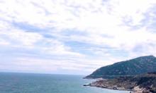 Đất nền biển Cà Ná liền kề cảng sổ đỏ thổ cư chỉ 750 triệu
