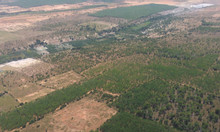 Bán 4200m2 đất Bình Thuận gần biễn giá 290 triệu có sổ đỏ