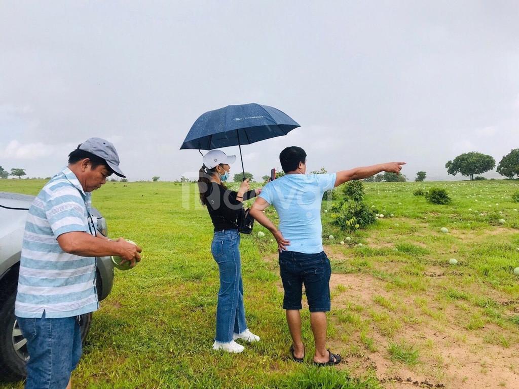 Đất ven biển Bình Thuận chỉ 50 ngàn/m2, đầu tư đón đầu ven biển