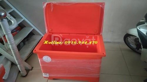 Thùng lạnh Thái Lan 800 lít, thùng đựng hải sản, thùng lạnh ướp bia