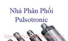 Nhà phân phối pulsotronic