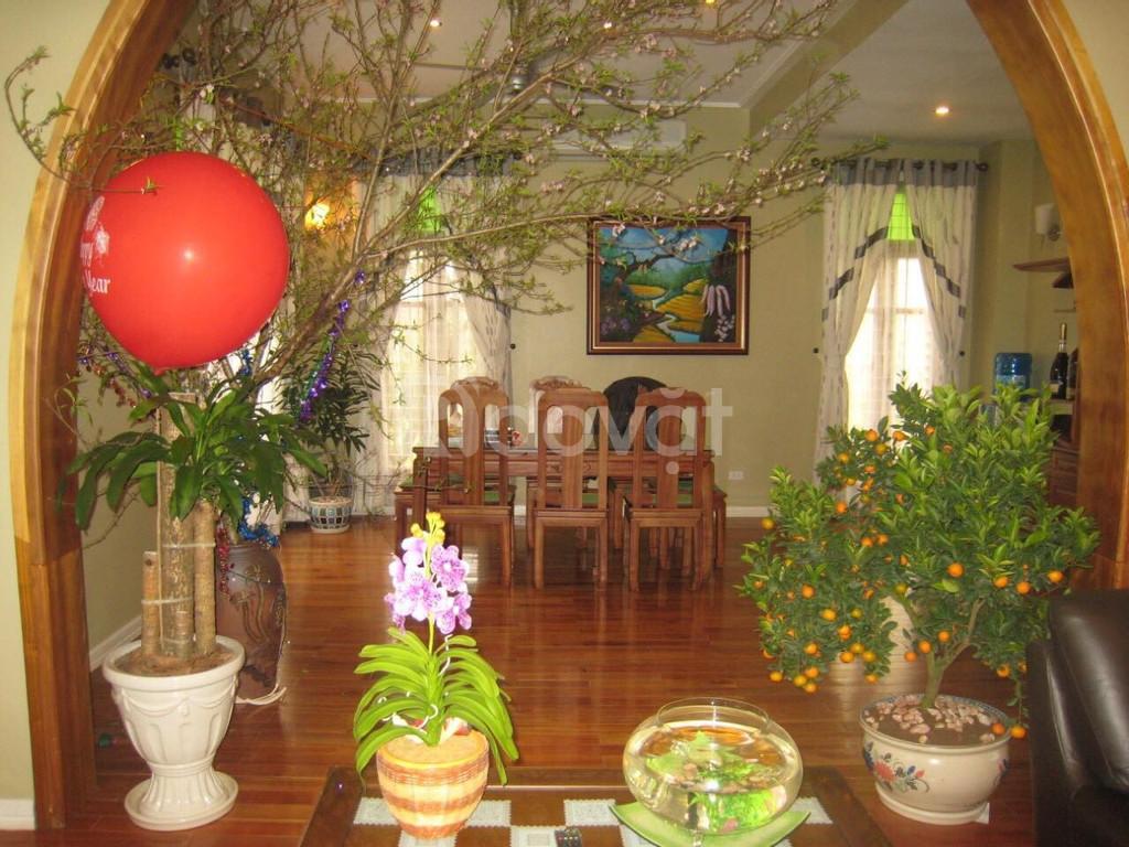 Bán biệt thự lô góc D6 vườn đào view vườn hoa giá hợp lý
