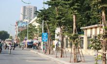 Nhà mặt phố Phạm Văn Đồng vỉa hè 8m, kinh doanh