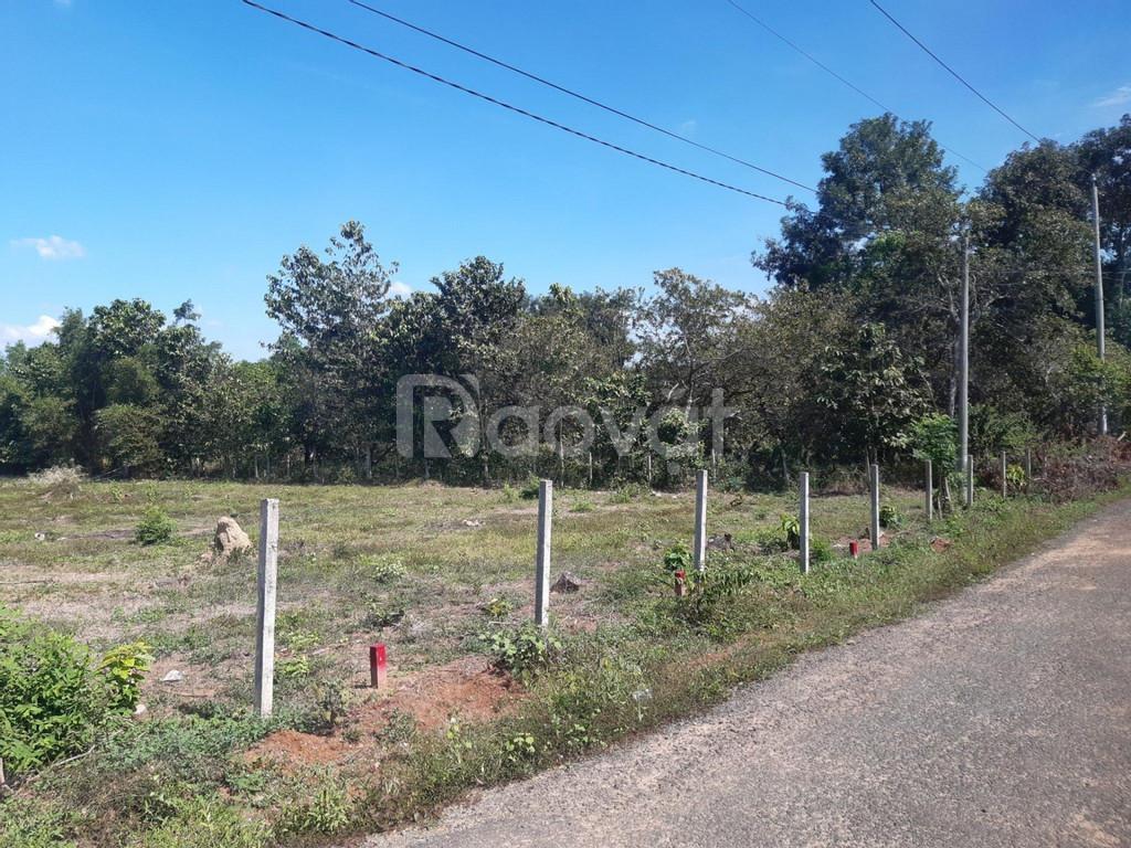 Bán 10 sào đất khu Chơn Thành, BP, 1000m2/400tr, cách TTHC 10p