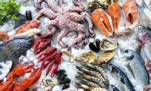 ANKACO-Cung cấp lắp đặt kho lạnh trữ hải sản tại Vũng Tàu