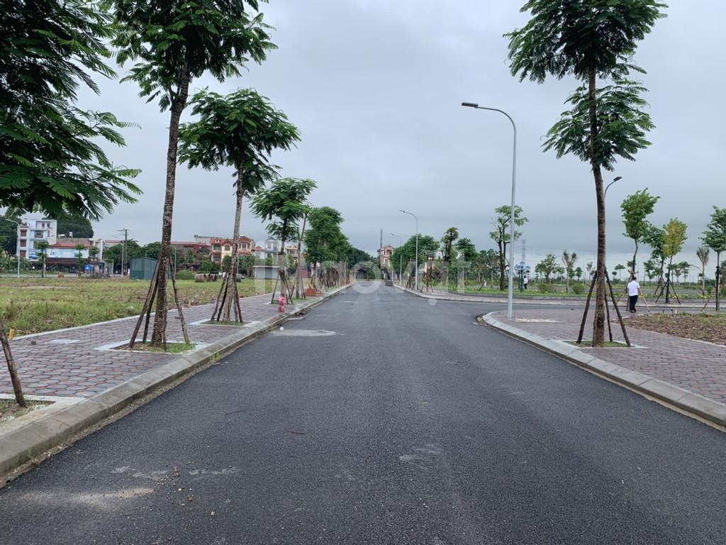 Ra mắt siêu dự án tại thị trấn Neo Yên Dũng