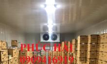 Rao vặt lắp đặt hệ thống kho lạnh bảo quản thực phẩm