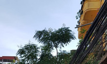 Bán nhà mặt phố 107 m2 Trương Định