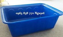 Thùng chữ nhật 200L - 1000L - 750 lít