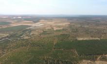 Bán 5000m2 đất Bình Thuận gần biễn giá 350 triệu có sổ đỏ