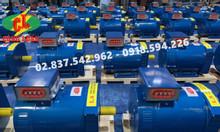 Đầu phát điện chổi than ST 1Pha - 10KW (Hàng chính hãng)
