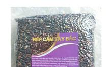 Nếp cẩm Tây Bắc (túi 1kg hút chân không)