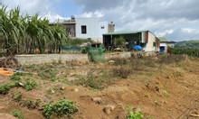 Đất đẹp, giá đầu tư ở 102 Lý Thái Tổ, xã Đạm Bri, tp Bảo Lộc, Lâm Đồng