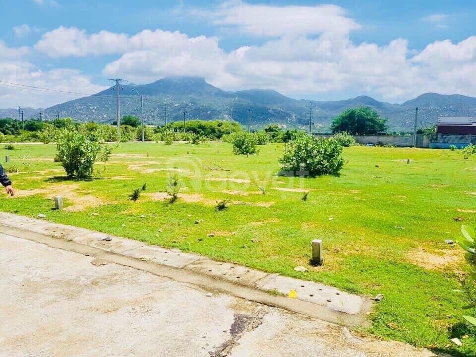 Bán đất nền sổ đỏ gần Cảng quốc tế Cà Ná, Thuận Nam,Ninh Thuận