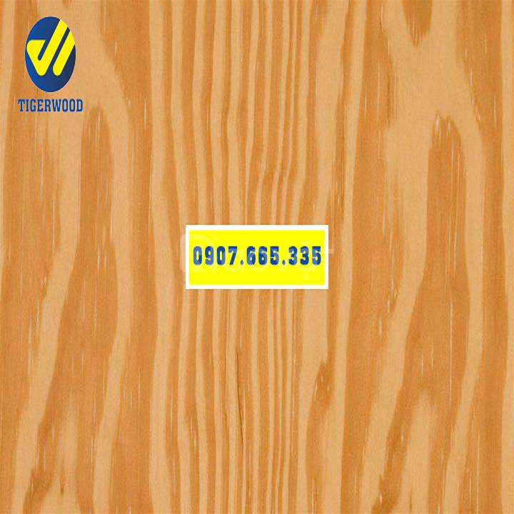 Giá gỗ thông mỹ