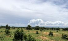 Tiềm năng đất vườn Bình Thuận tăng trưởng cùng với dự án của nhà nước