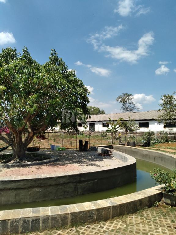 Trang trại nhà vườn đường xe hơi Lý Thái Tổ, Dambri, view đẹp, 6.25 tỷ