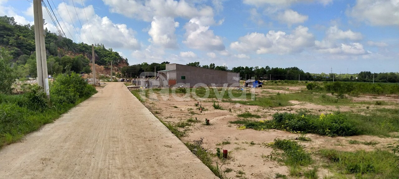 Ngộp ngân hàng bán gấp đất thổ cư phường Tân Phước, Bà Rịa Vũng Tàu