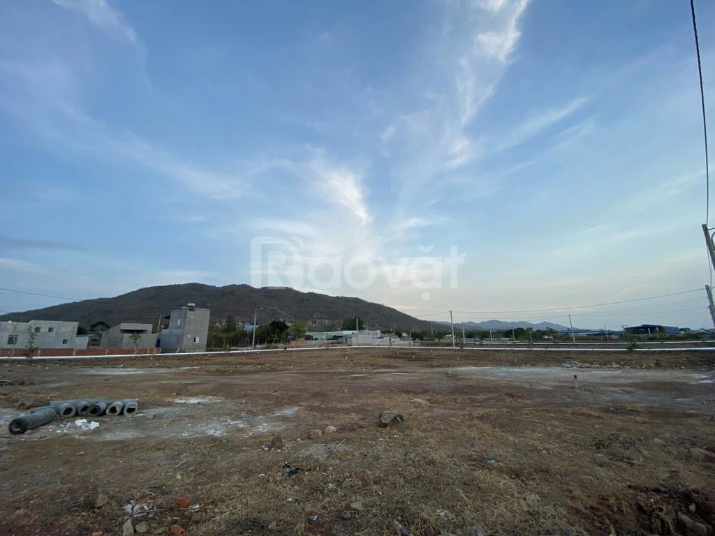 Đất thổ cư Long Hải, 142m2 thổ cư 100%, 700 triệu nhận nền