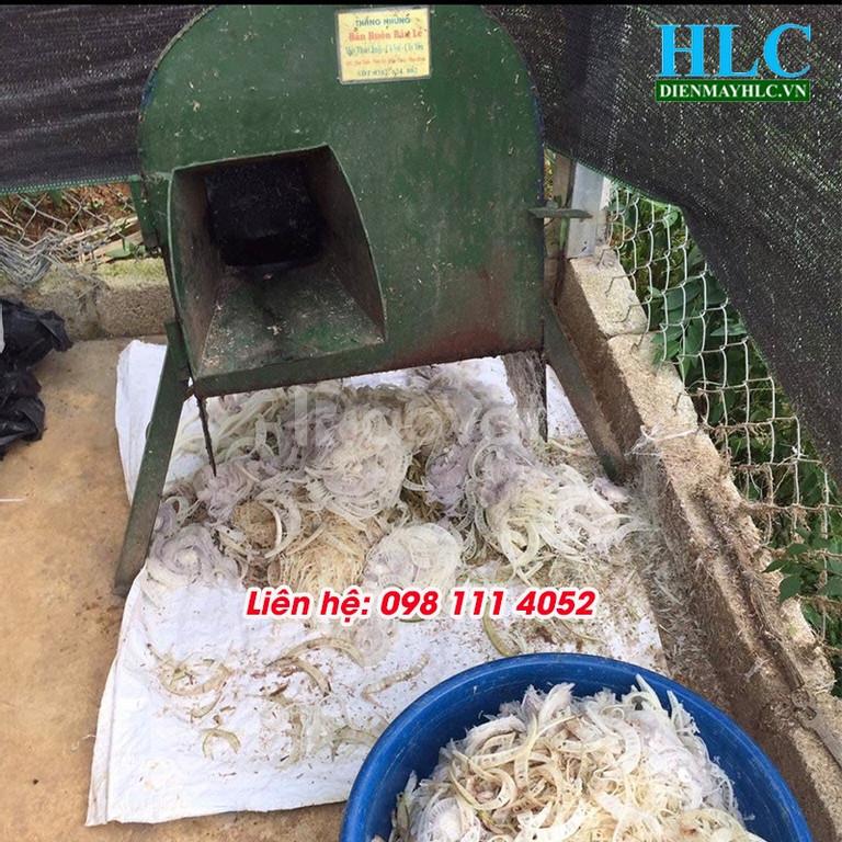Máy thái chuối mini làm thức ăn chăn nuôi cho cá, nuôi gà vịt