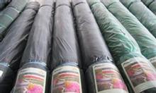 Lưới che nắng thái lan, lưới che nắng nhập khẩu, lưới che nắng cho lan