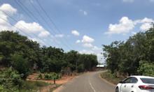 Bán đất mặt tiền đường xã Phước Bình, Long Thành, Đồng Nai, SHR,