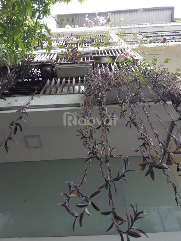 Nhà Giải Phóng, phố Vọng, Thanh Xuân, Kinh doanh, 45m2x5 tầng